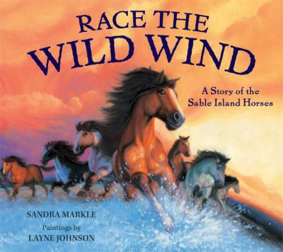 Race the wild wind : a story of the Sable Island horses