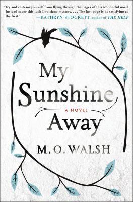 My sunshine away : a novel