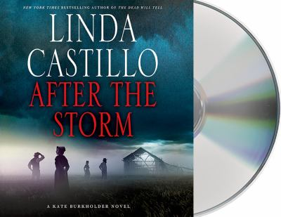 After the storm : a Kate Burkholder novel (AUDIOBOOK)