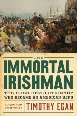 The immortal Irishman : the Irish revolutionary who became an American hero