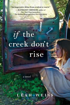 If the creek don't rise : a novel