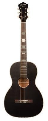 Guitar Kit #2 :  Recording King Dirty 30's Parlor Acoustic Guitar
