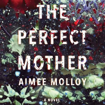 The perfect mother : a novel (AUDIOBOOK)