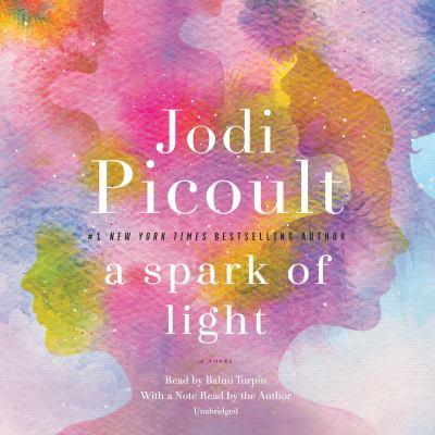 A spark of light : a novel (AUDIOBOOK)