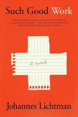 Such good work : a novel