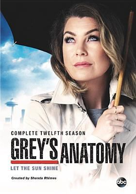 Grey's anatomy. Complete twelfth season