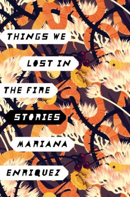 Things we lost in the fire : stories
