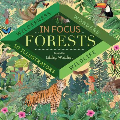 Forests : wilderness, wonders, wildlife