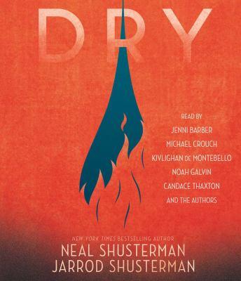Dry (AUDIOBOOK)
