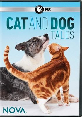 Cat and dog tales