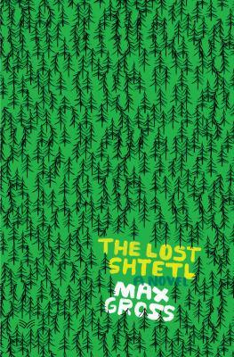 The lost shtetl  : a novel