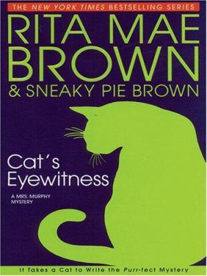 Cat's eyewitness (LARGE PRINT)