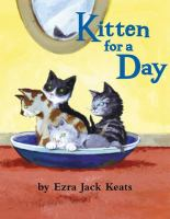 Kitten for a day
