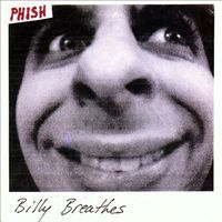 BILLY BREATHES (COMPACT DISC)