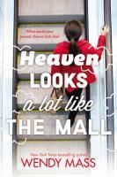 Heaven looks a lot like the mall : a novel