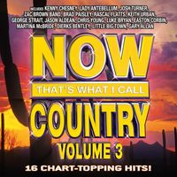 Now that's what I call country. Volume 3