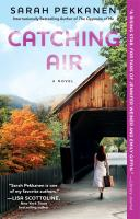 Catching air : a novel