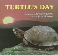 Turtle's day