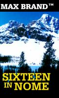 Sixteen in Nome : a North-Western story (LARGE PRINT)