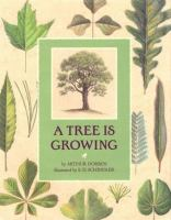 Tree is Growing