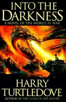 Into the darkness : a novel of the World at war