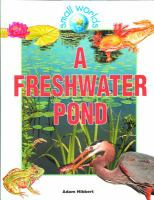A Freshwater Pond