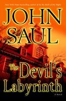 The devil's labyrinth : a novel