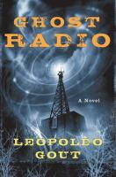 Ghost radio : a novel