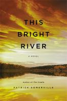 This bright river : a novel