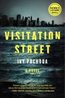 Visitation street : a novel