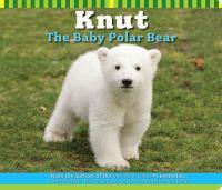 Knut, the baby polar bear