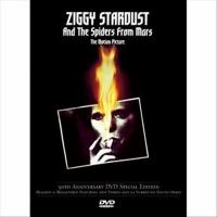 Ziggy Stardust and the Spiders from Mars : the motion picture