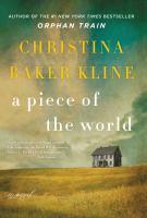 A piece of the world : a novel