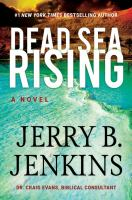 Dead Sea rising : a novel