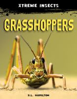 Grasshoppers