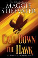 Stiefvater, Maggie Call down the hawk