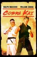 Cobra Kai. Seasons 1 & 2
