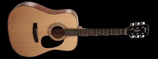 Guitar Kit #5 : Cort AD810 Dreadnought Acoustic Guitar