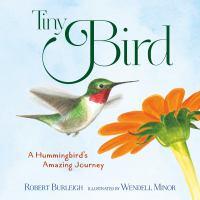 Tiny Bird : a hummingbird's amazing journey