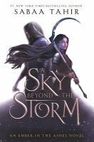 A Sky Beyond the Storm / <br> (LARGE PRINT)