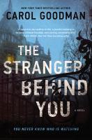 The stranger behind you : a novel